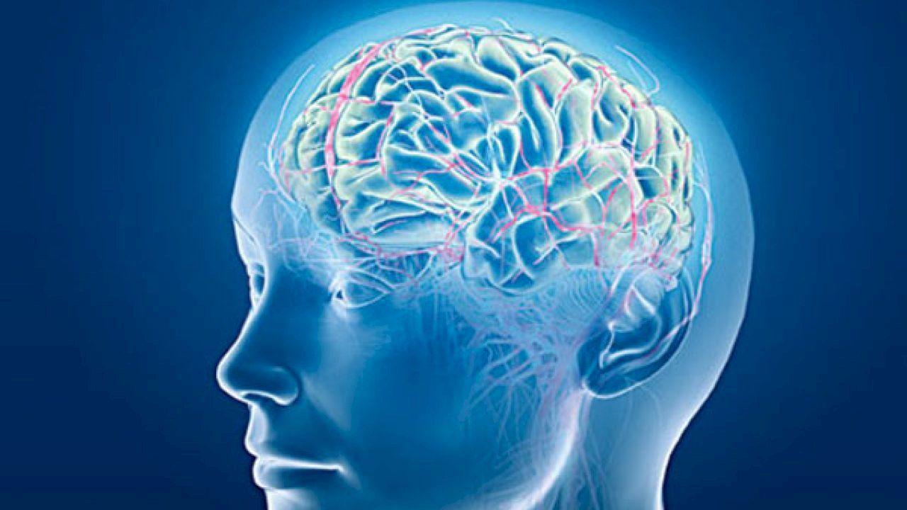 ما أسباب جلطة الدماغ Speech Disorder Brain Training Brain Scan