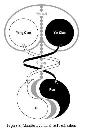 the eight extraordinary meridians  three levels of