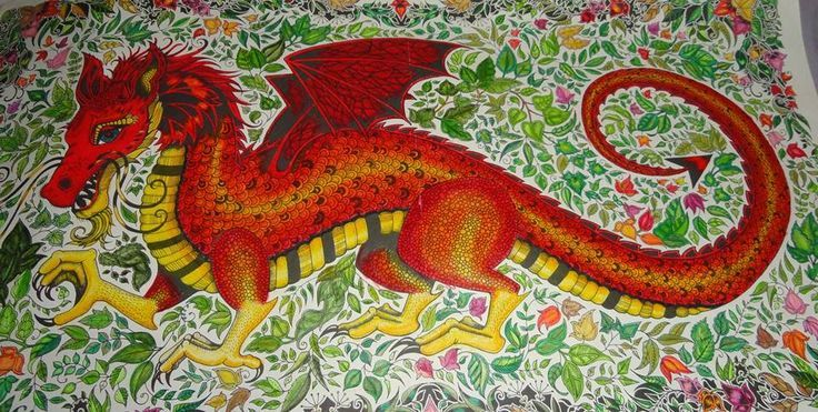 Enchanted Forest Coloring Book Dragon