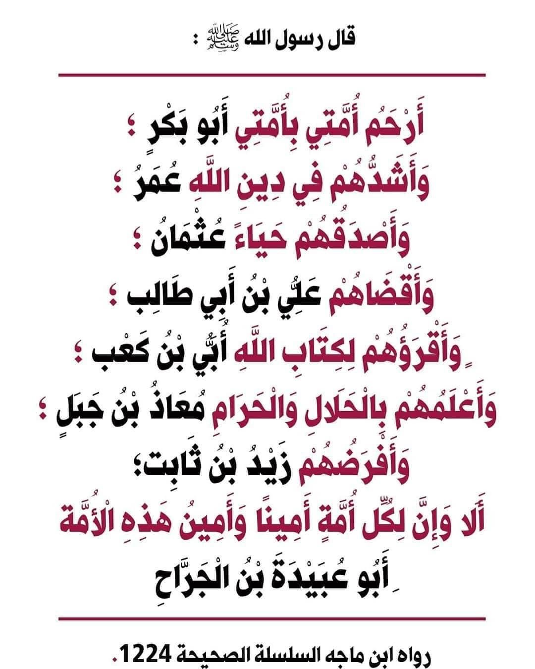 Pin By Allaoua Mekeddem On قراءة Islam Facts Words Quotes Quotes