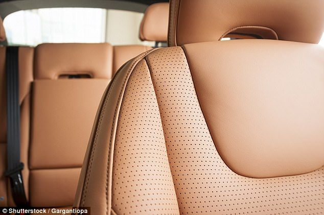 34fd6bd7be2c21cb6db34486ed59782a - How To Get Smell Out Of Leather Car Seats