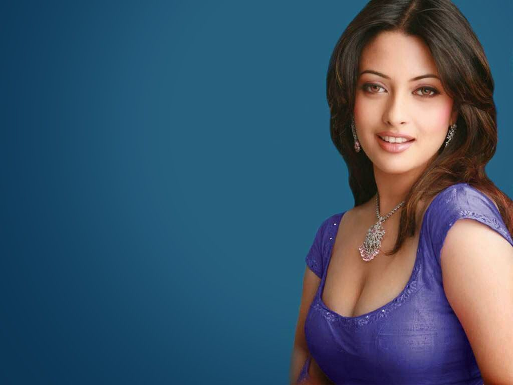 Indian Bollywood Actress Riya Sen Full Hd Wallpapers For Desktop   Madhuram13Gmailcom  Bollywood Actress, Indian Bollywood Actress -6019