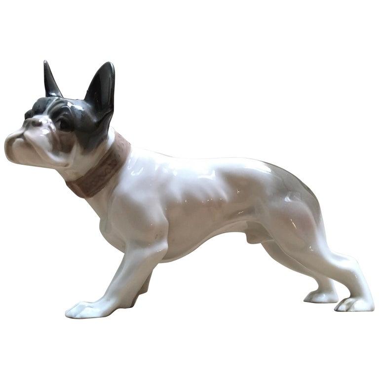 1920s French Bulldog Figurine By Rosenthal Selb Bavaria Germany Art Deco