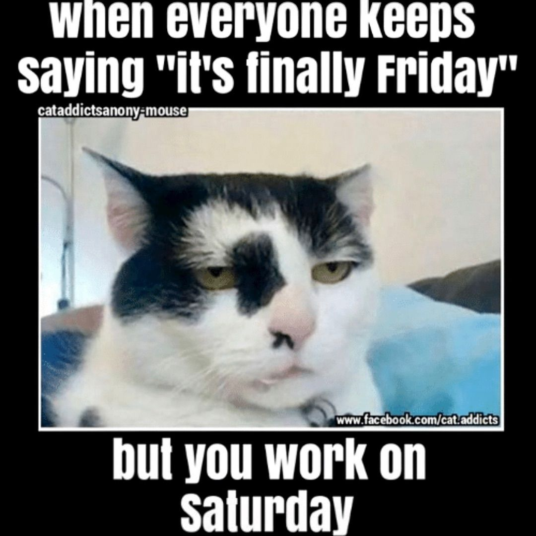 Its Finally Saturday Meme