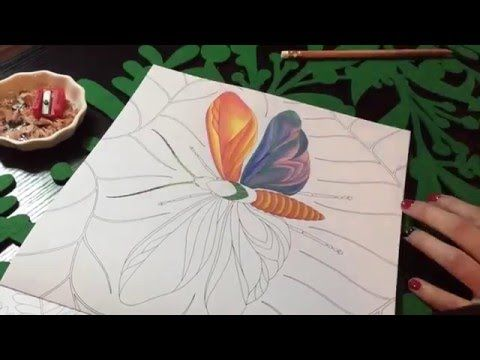 Butterfly Blending Techniques Tropical World Adult Coloring Book