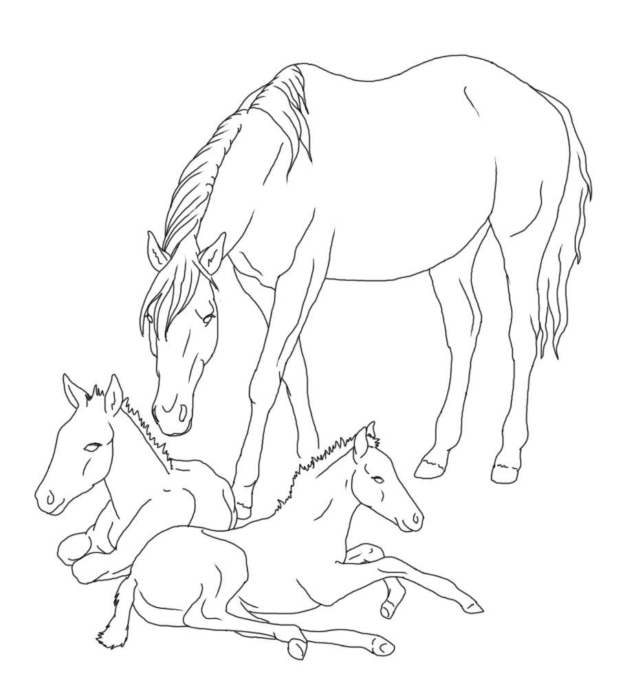 Pferde Ausmalbild Zum Ausdrucken: Zum Ausdrucken Ausmalbilder