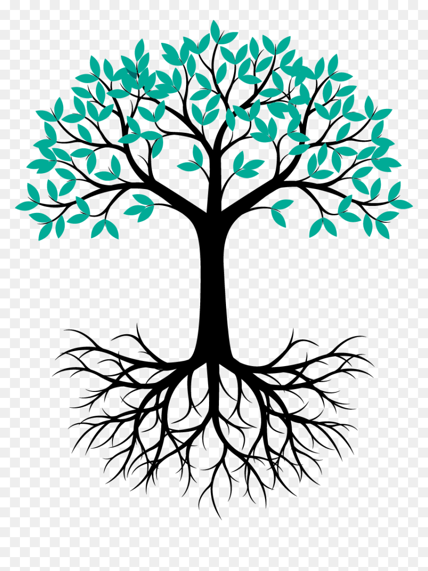 Google Image Result For Https Www Vhv Rs Dpng D 193 1931633 Tree Root Vector Png Transparent Cartoons Plant Drawing Png Root Vector Tree Roots Tree
