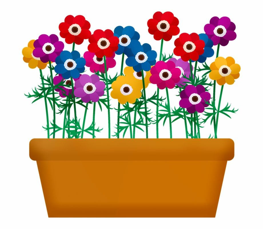 Flowerbox Flowers In Pot Flowers Garden Spring Flower Pot With Flowers Clipart Is A Free Transparent P Transparent Flowers White Flower Pot Small Flower Pots