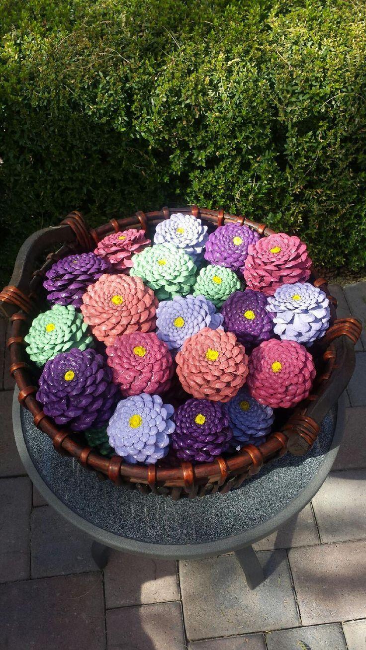 Pine cone zinnias #pineconeflowers