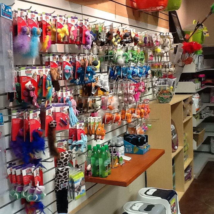 Here at Bingo's we understand the need to keep your kitty enriched and entertained. We have a wide selection of toys to keep your hunter feeling like the king or queen of the jungle that they are.