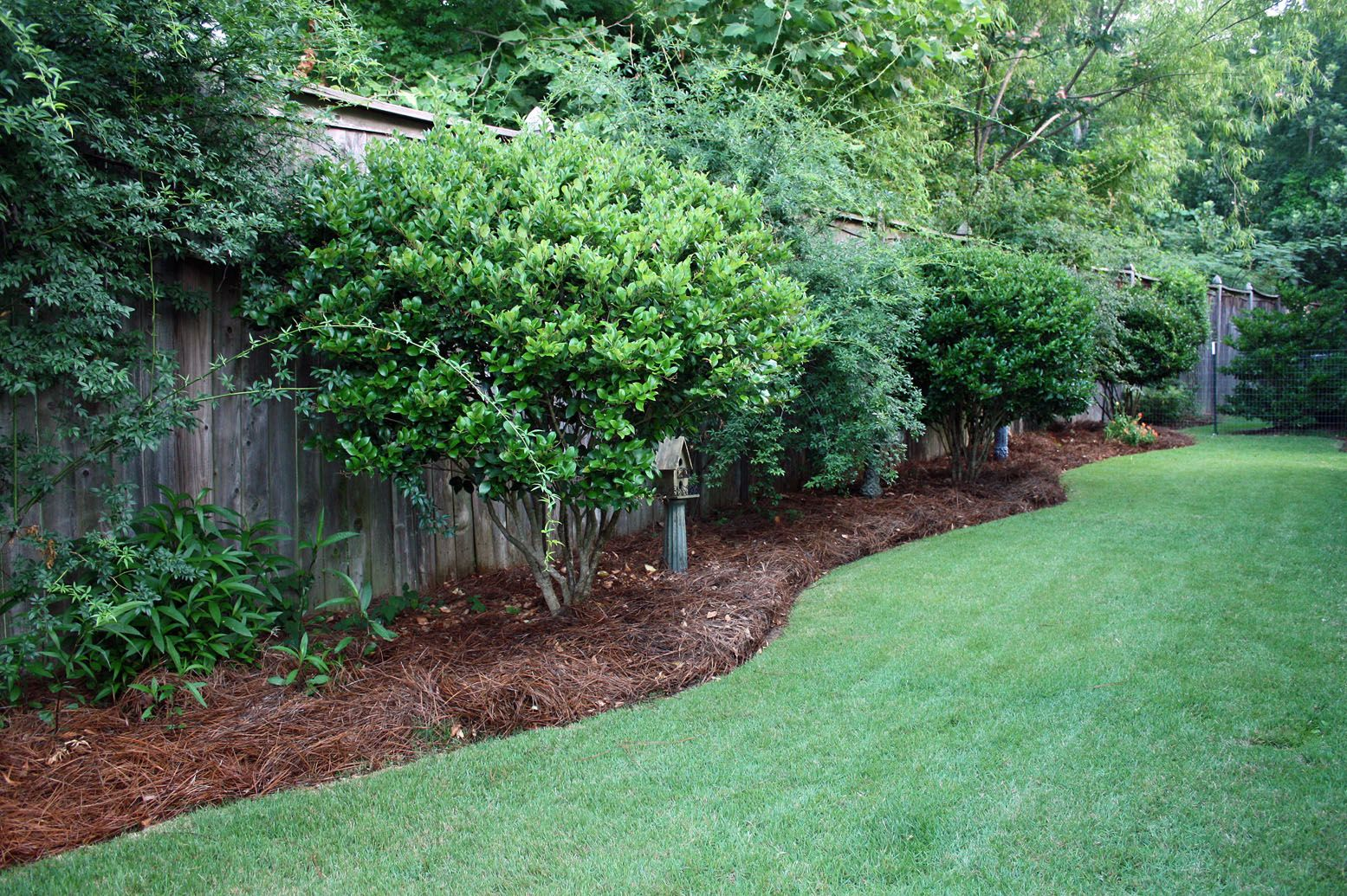 Cheapest Landscaping for Long Narrow Backyards | Our ... on Narrow Yard Ideas  id=98374