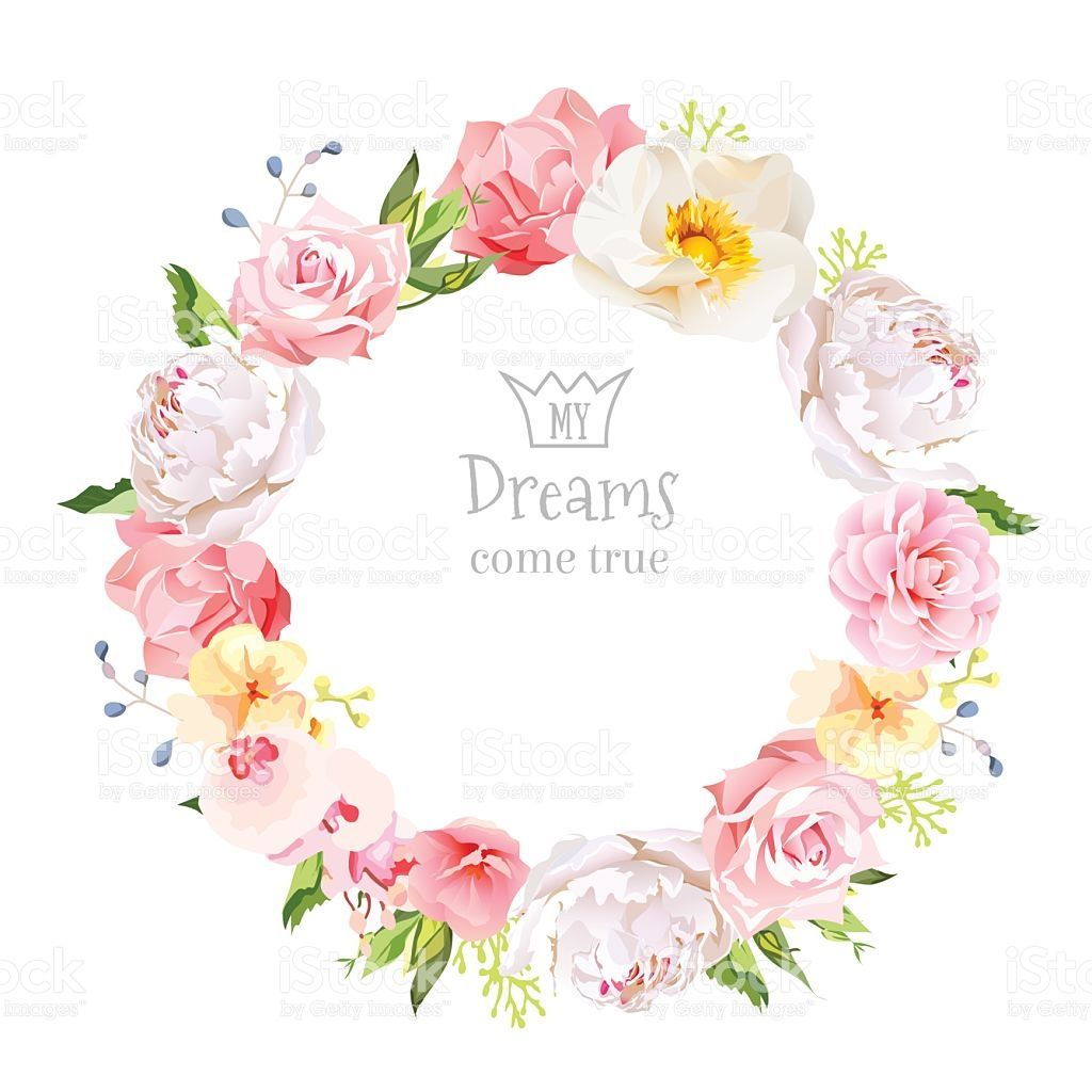 Peony Wild Rose Orchid Carnation Camellia Blue Berries And Green Floral Border Design Watercolor Flower Wreath Colorful Succulents