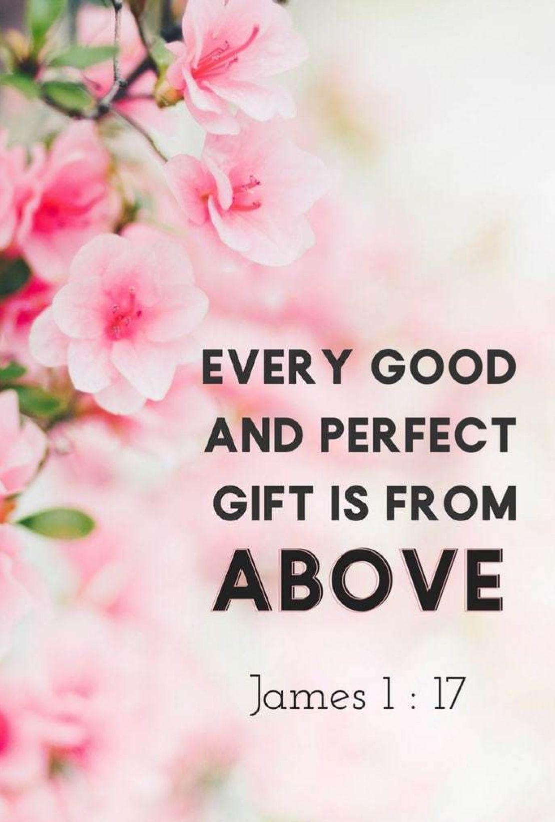 James 1:17 | Scripture quotes, Scripture verses, Biblical quotes