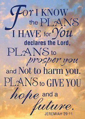 Image result for my plans are to prosper you kjv