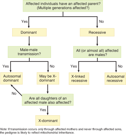 A Basic Decision Tree For Determining The Mode Of Inheritance In A Pedigree Biochemistry Lectures Notes Genetics