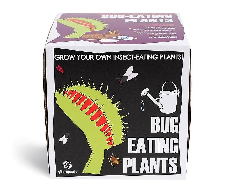 Kit for growing carnivorous plants Gift Republic Sow And Grow