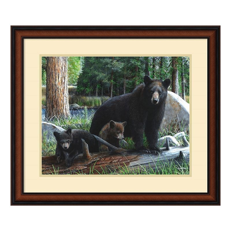 'New Discoveries'' Bear and Cubs Framed Wall Art, Brown
