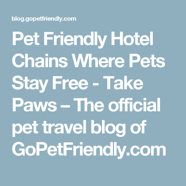 Pet Friendly Hotel Chains Where Pets Stay Free Yorkie Pinterest
