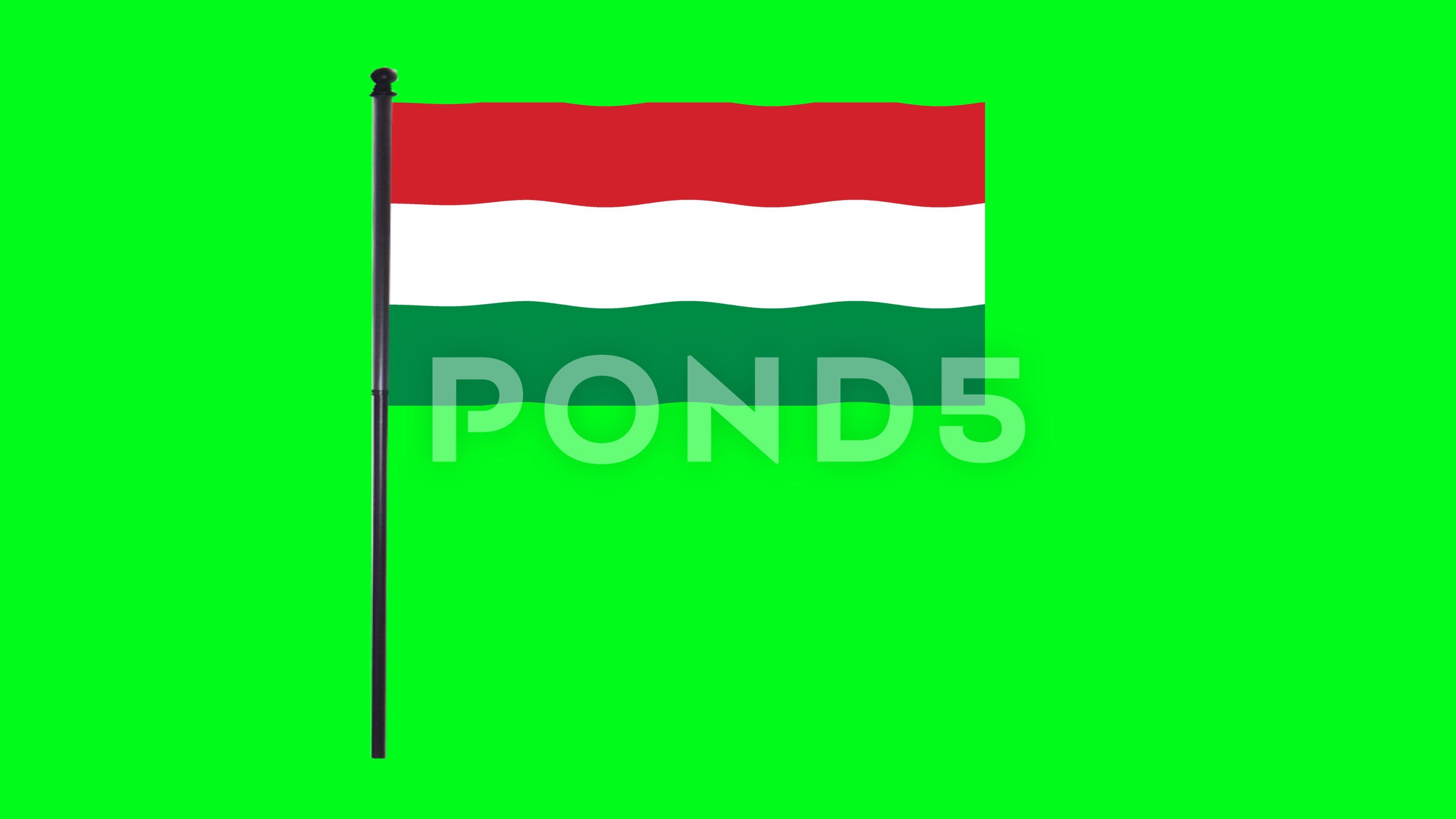 4k Hungary Flag Is Waving In Green Screen Stock Footage Ad Waving Flag Hungary Green Hungary Flag Greenscreen Waves