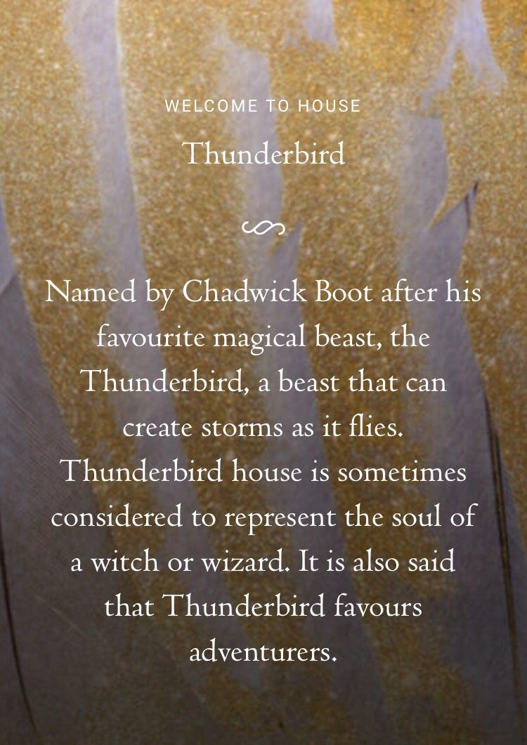 Officially A Member Of The Thunderbird House At Ilvermorny School Witchcraft And Wizardry