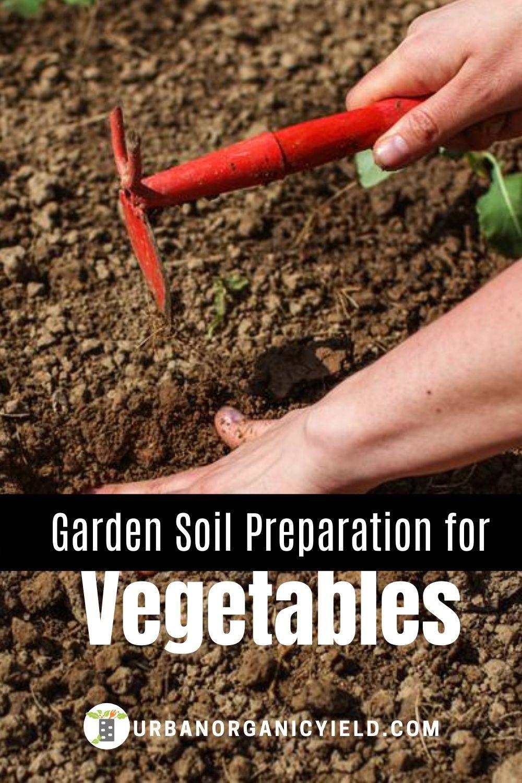 Garden Soil Preparation for Vegetable Garden in 2020