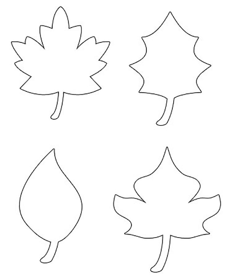 Листья деревьев в картинках для аппликации