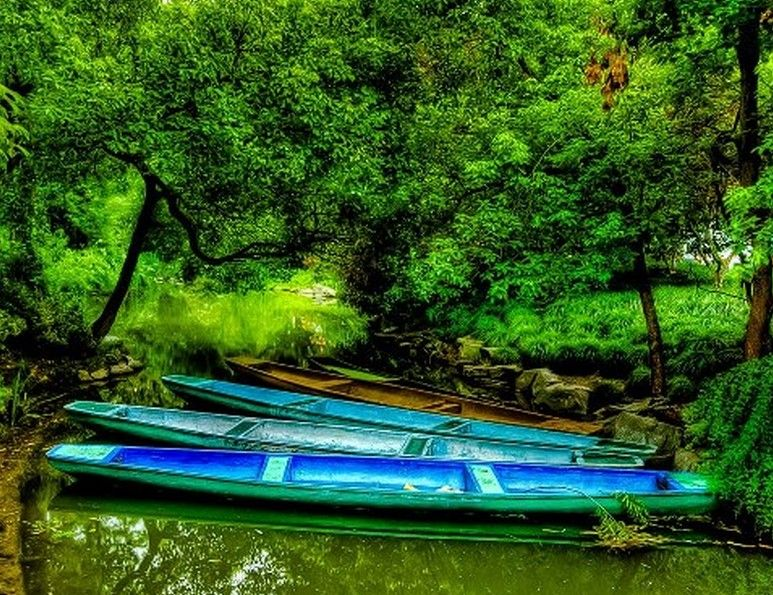 Dragon boats of commoners on a lonely stream near Hangzhou, China   Photo ~ Trey Ratclif