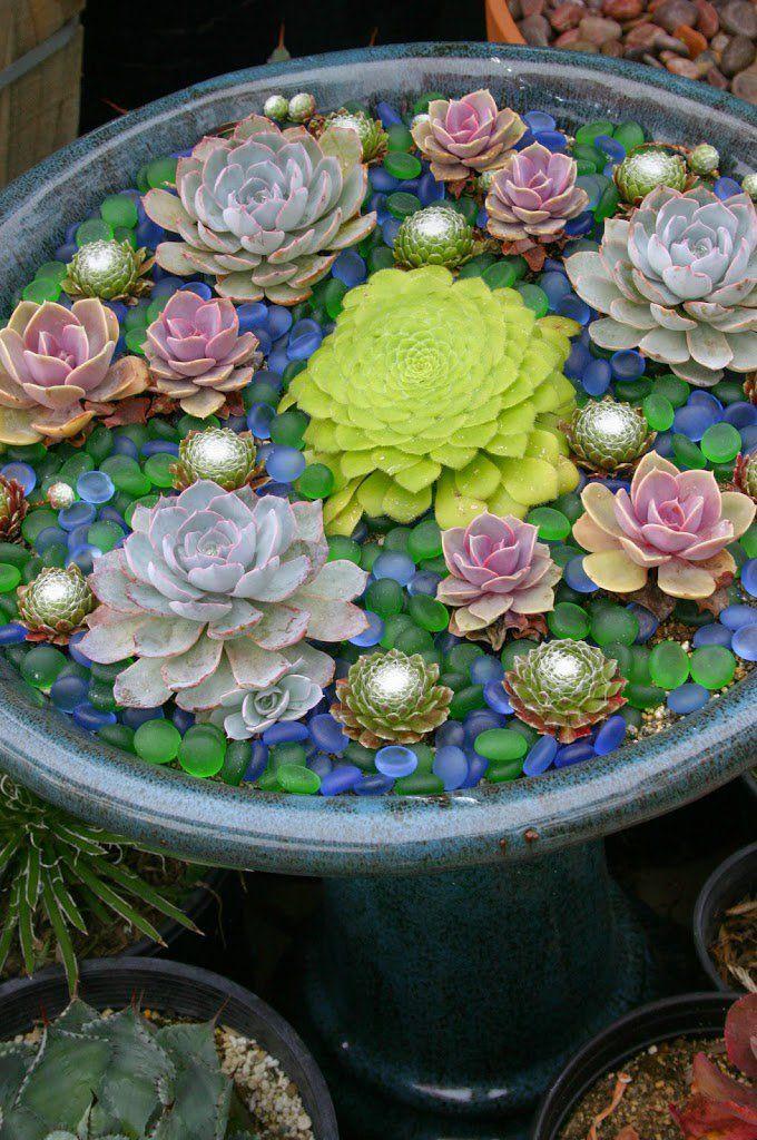 20 ideas para decorar un lindo jard n con suculentas para - Plantas jardineras exterior ...