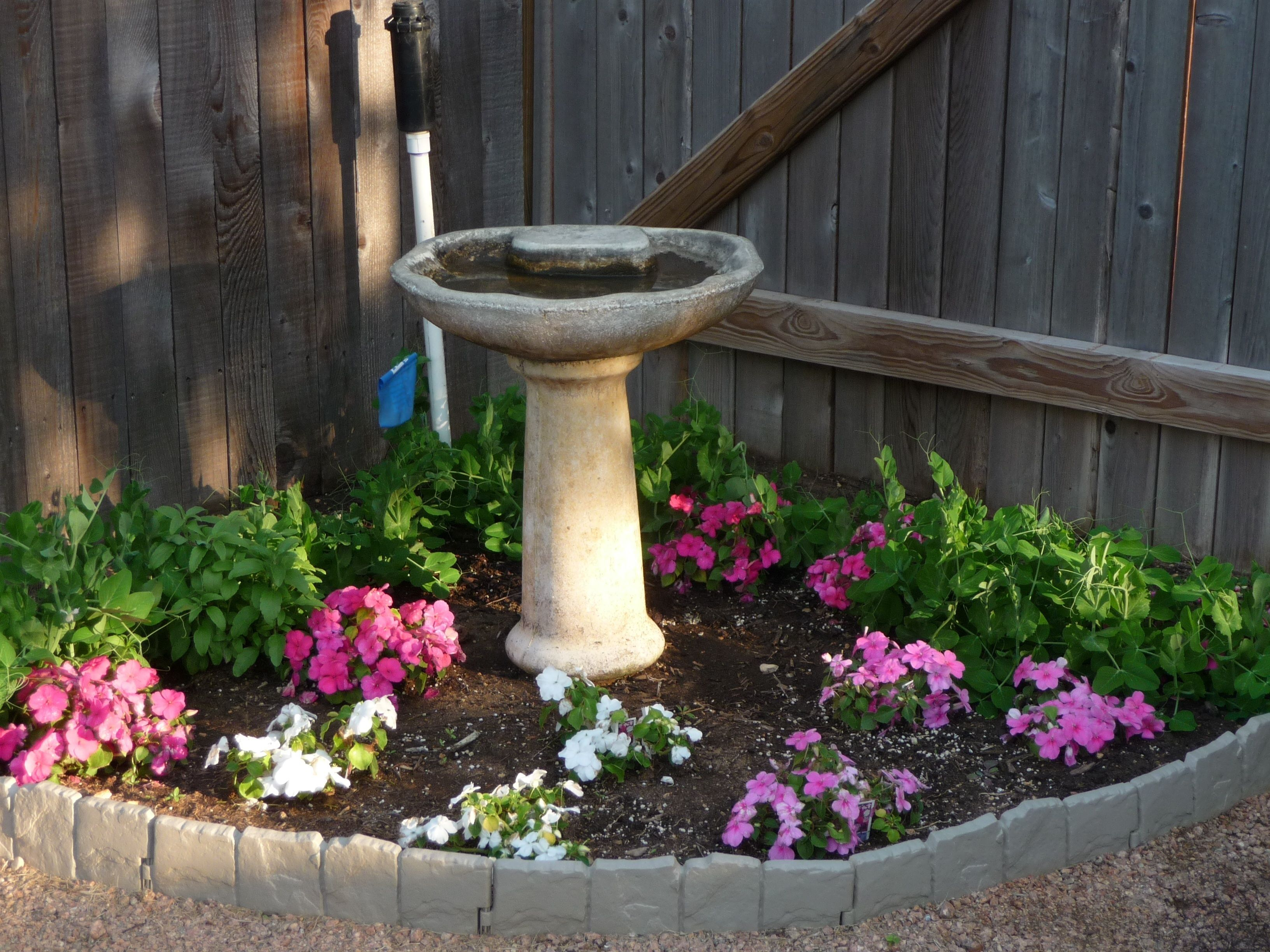 Corner flower beds birdbath in flower bed my dream for Backyard flower garden designs