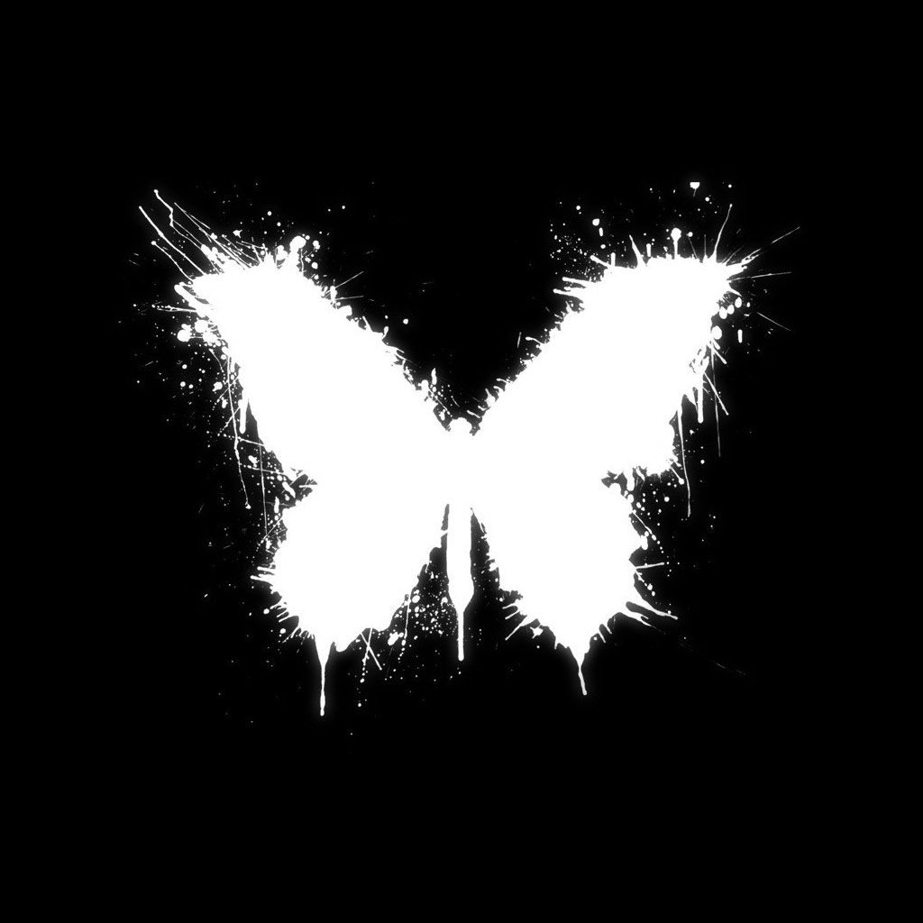 Butterfly Collection Butterfly Black And White Background Hd Wallpaper Black And White Background
