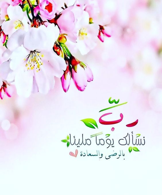 احلى صباحيات حالات واتس صباحيات جديده صباحيات جميلة Zina Blog Good Morning Greetings Beautiful Morning Messages Morning Greeting
