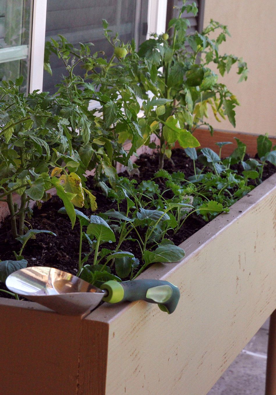 Build Your Own Vegetable Gardenu2014No Yard Required