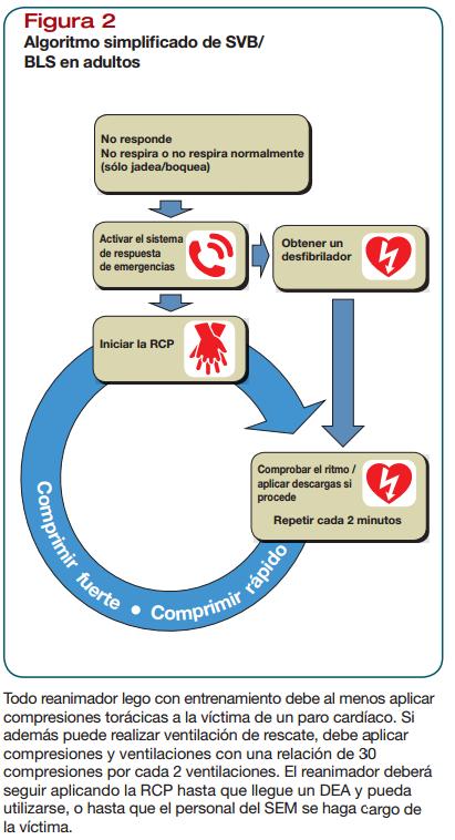 Soporte Vital Básico para adultos - Reanimación cardiopulmonar ...