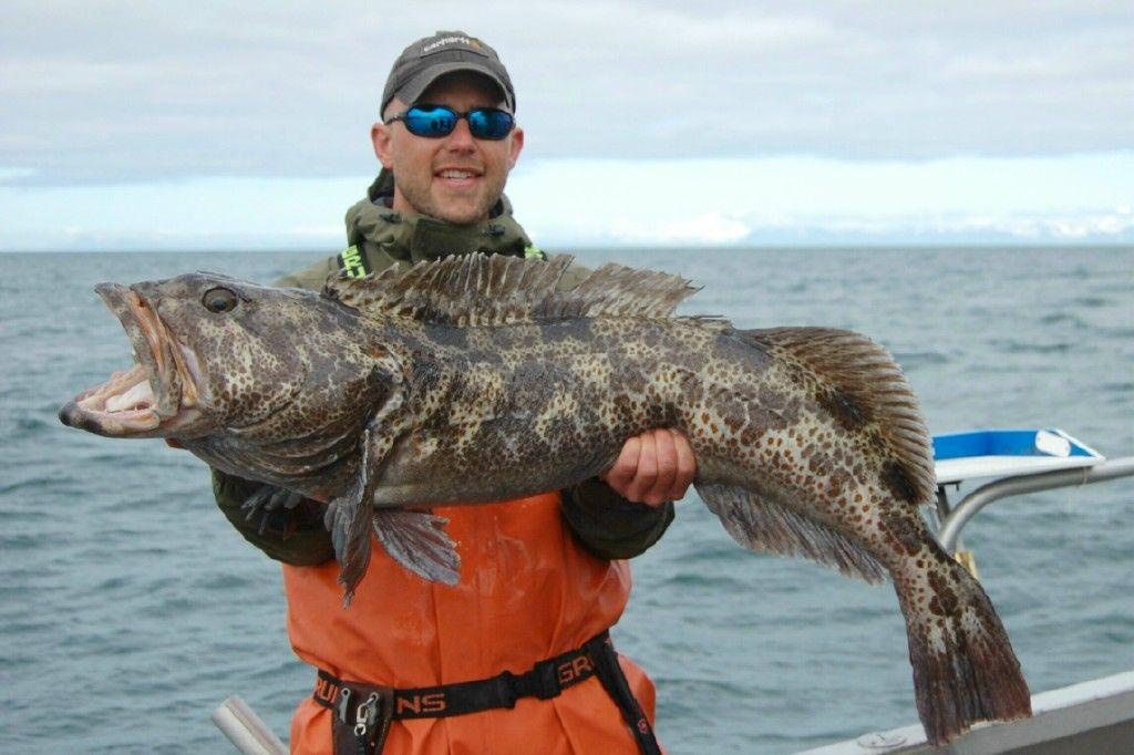 alaska fisherman kodiak resort the best alaska fishing