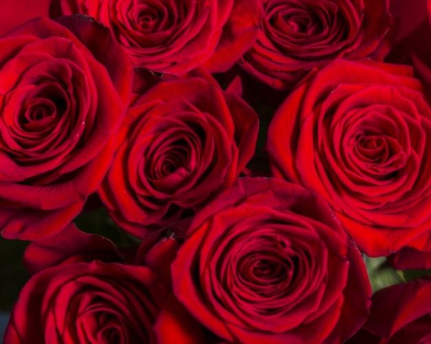 صور ورد واجمل صور ورود وزهور وازهار طبيعية جميلة ورائعة Zina Blog Beautiful Bouquet Rose Bouquet Rose