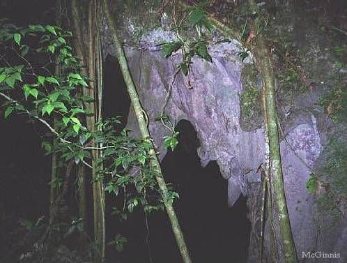 Windsor Great Cave - Upper Entrance