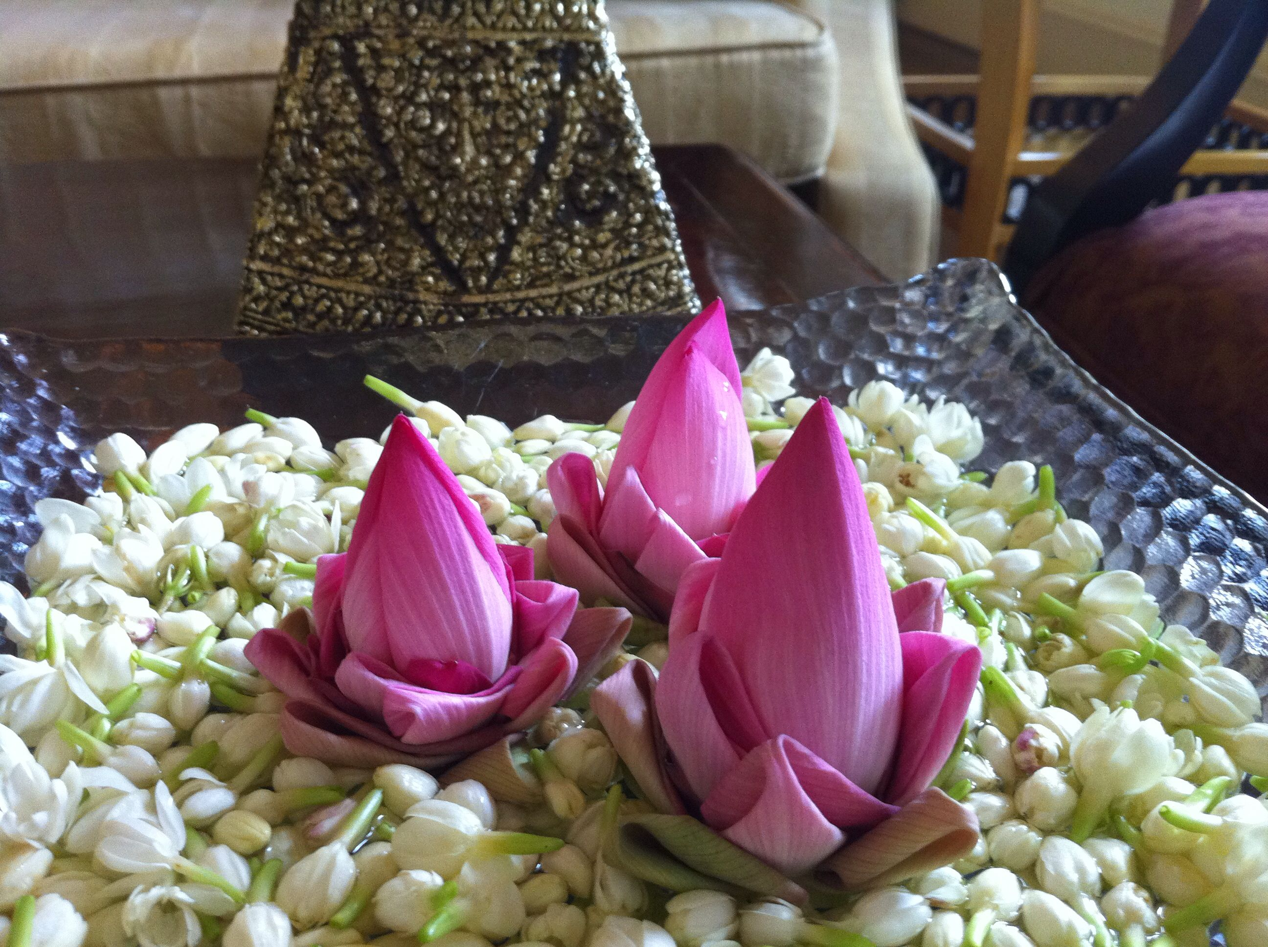 Flowers in room #lotus #Cambodia
