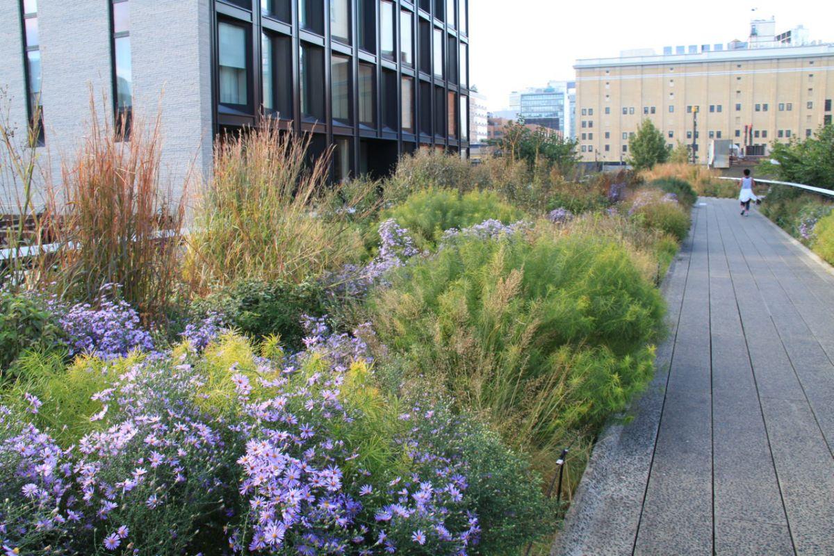 Piet Oudolf S High Line Planting Is A Classic Example Of Enhanced Nature Landscape Design Modern Garden Garden Design