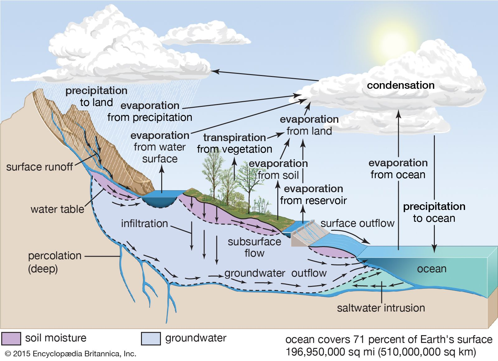 water cycle in 2020 | Water cycle
