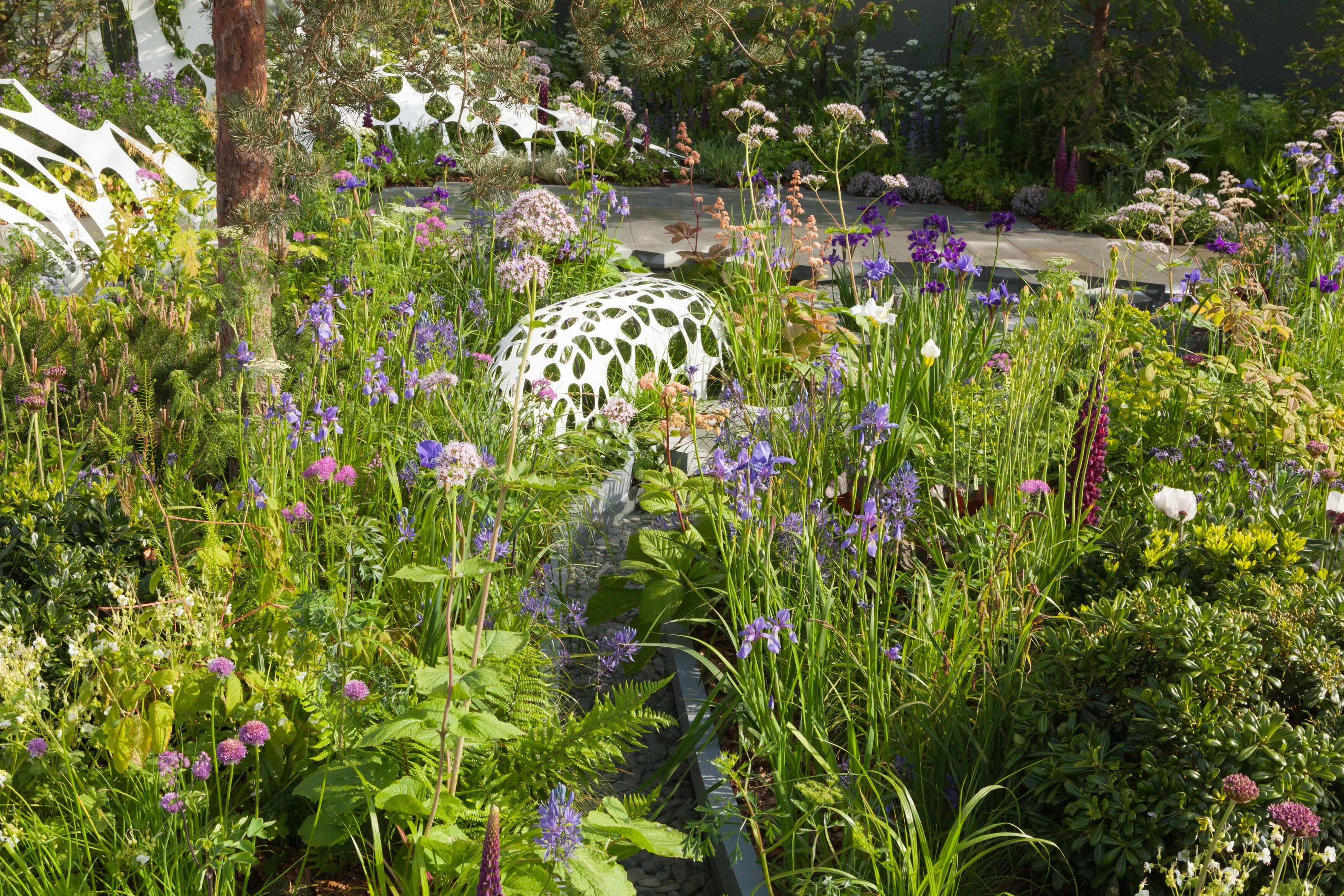 The Manchester Garden In 2020 Chelsea Flower Show Flower Show
