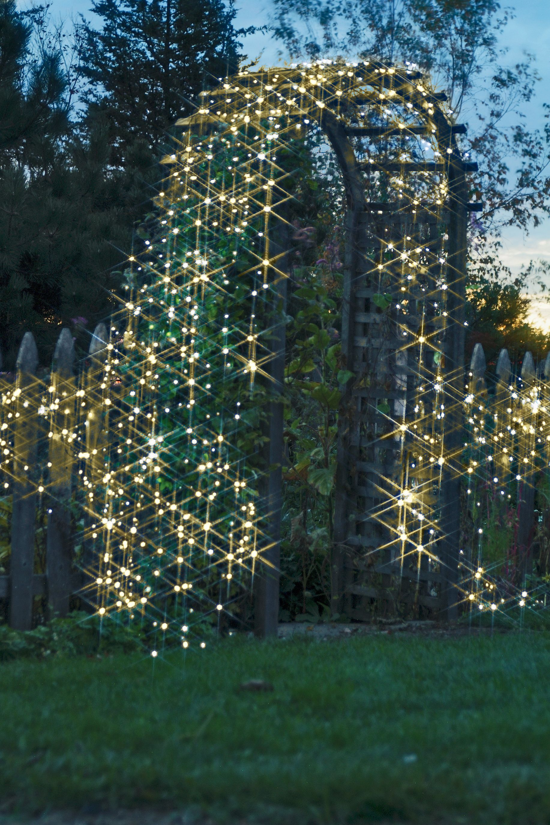Battery operated led string lights outdoor accents pinterest add the magic of light anytime anywhere with these indooroutdoor battery operated string lights with 200 warm white led bulbs in a string aloadofball Choice Image