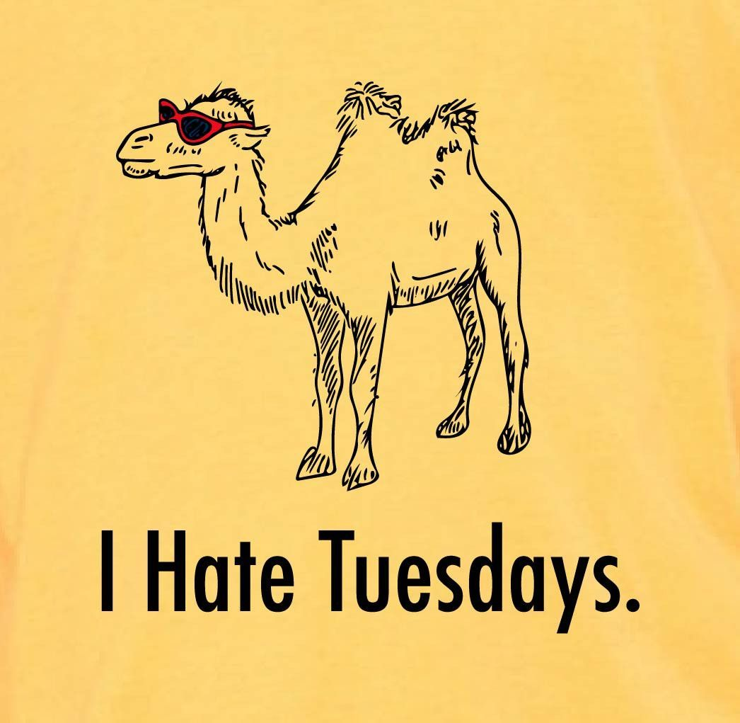 I Hate Tuesday Quotes