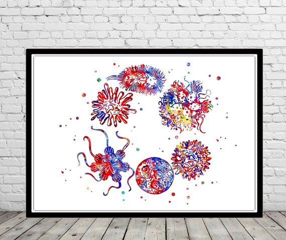 Human Viruses And Microbes Medical Office Decor Watercolor Viruses