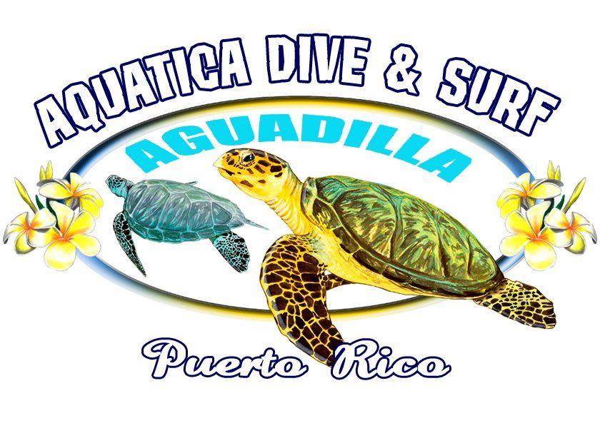 Aquatica Dive & Surf  Web: www.360DiveCenter... Facebook: www.facebook.com/... Twitter: @360divecenter g+: TrescientosSesenta Dive Center Mail: contacto@360divec... Skype: 360Dive Center