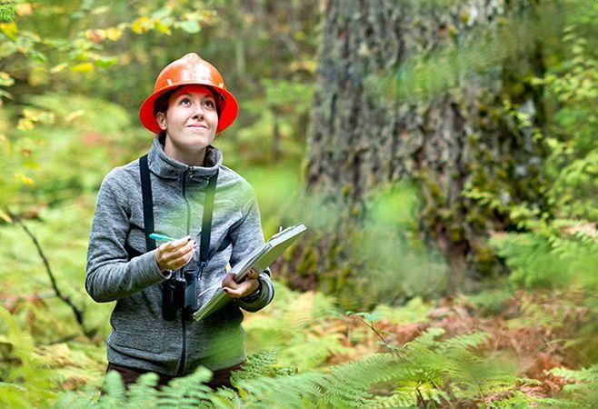 Oregon State University Online Environmental Sciences