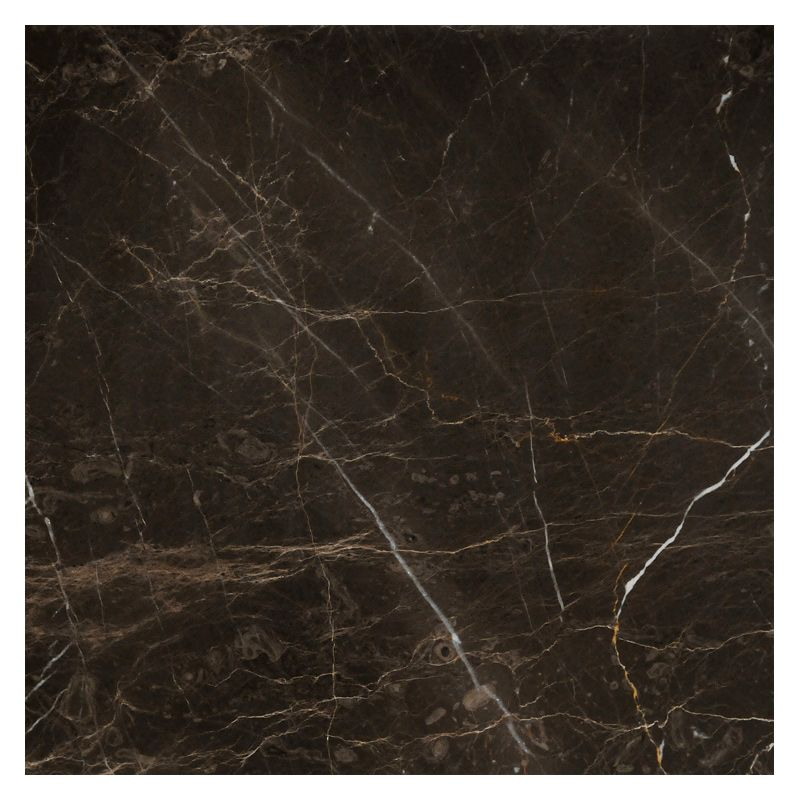 Complete Tile Collection Natural Stone Marble Tile Rothson Brown Extra Polished Mi 219 Mp 110 201 Marble Texture Seamless Marble Tile Polished Marble Tiles