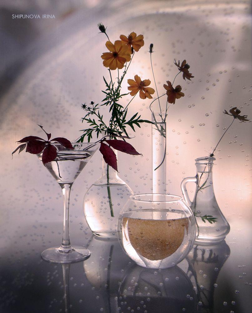 Обои стекло, натюрморт, бутылка, цветы, графин. Разное foto 16