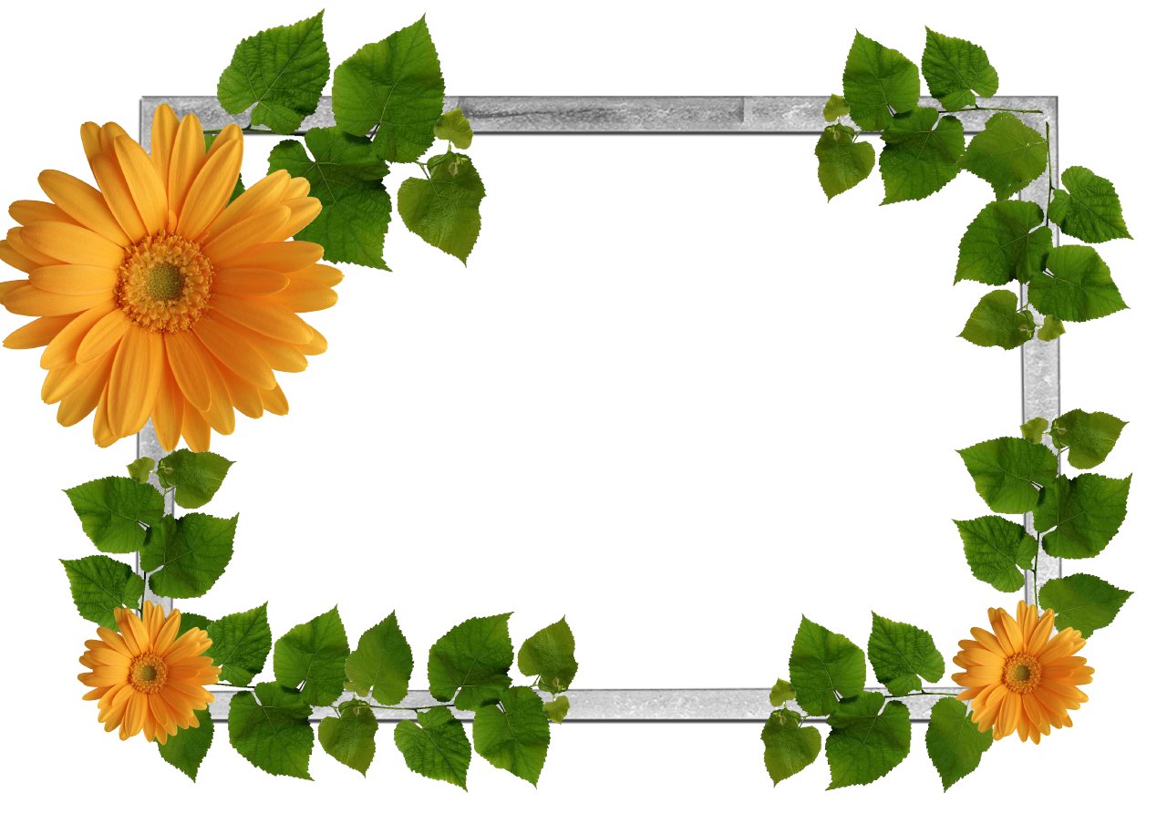 Orange Flowers And Green Leaves Picture Frame Png 1280 904 Flower Frame Png Flower Frame Flower Border Png