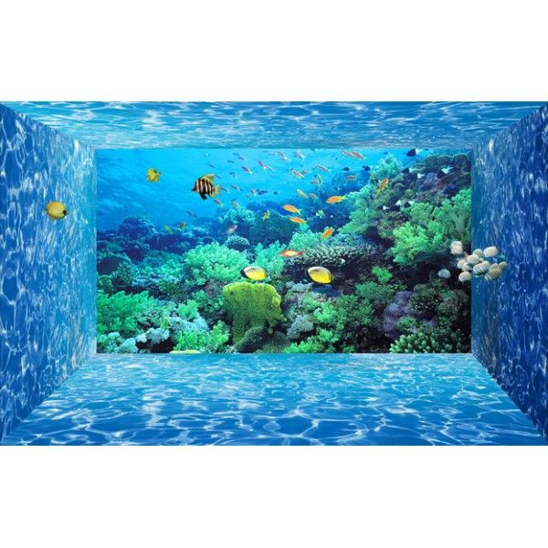 papier peint 3d fond marin effet aquarium tapisserie num rique sur mesure papier peint 3d fond. Black Bedroom Furniture Sets. Home Design Ideas