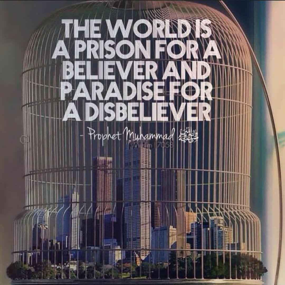 Follow Islamic Treasure For Daily Reminders Islam Deen Loveislam Allah Makkah Madina 2019 Islamictreasure Loveallah Islamicquotes Isl In 2020 About Me Blog